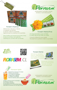 Brochure lineas Florasem 2012